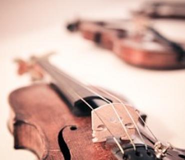 corde violino