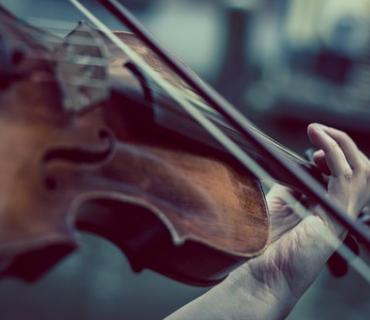 violino prezzi