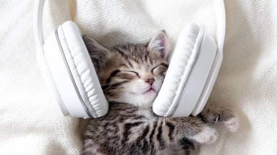 musica e sonno